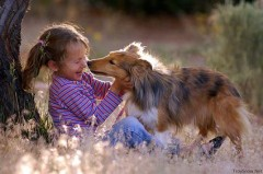 child-and-dog.jpg